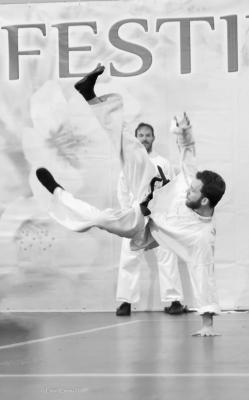 Festival dell'Oriente 2017 - Shaolin Ti Kung Ch'üan (Tecniche di caduta)