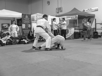Festival dell'Oriente 2018 - Pratica di Chin-na (leve articolari)