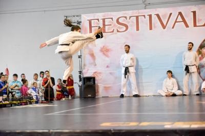 Festival dell'Oriente 2017 - Shaolin - 3° Lu di Tui Fa (Calci)