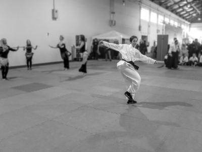 Festival dell'Oriente 2018 - 3° Lu di Shaolin Tui Fa (Calci)