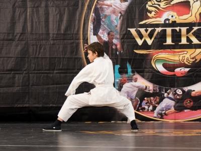 Festival dell'Oriente 2015 - Shaolin - Po Chi 3° Lu