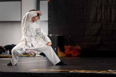 Festival dell'Oriente 2015 - Shaolin - Tui Fa
